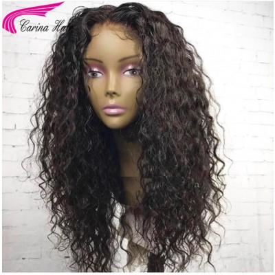 Brazilian Loose Curly Human Hair Lace Wigs with Baby Hair Pre Plucked Hairline