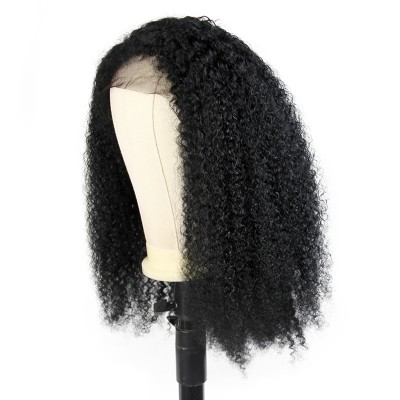 Carina Customized 10A Wet Curly Wig Brazilian Virgin Human Hair Lace Wigs Pre Plucked Hairline